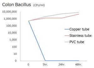 colon-bacillus